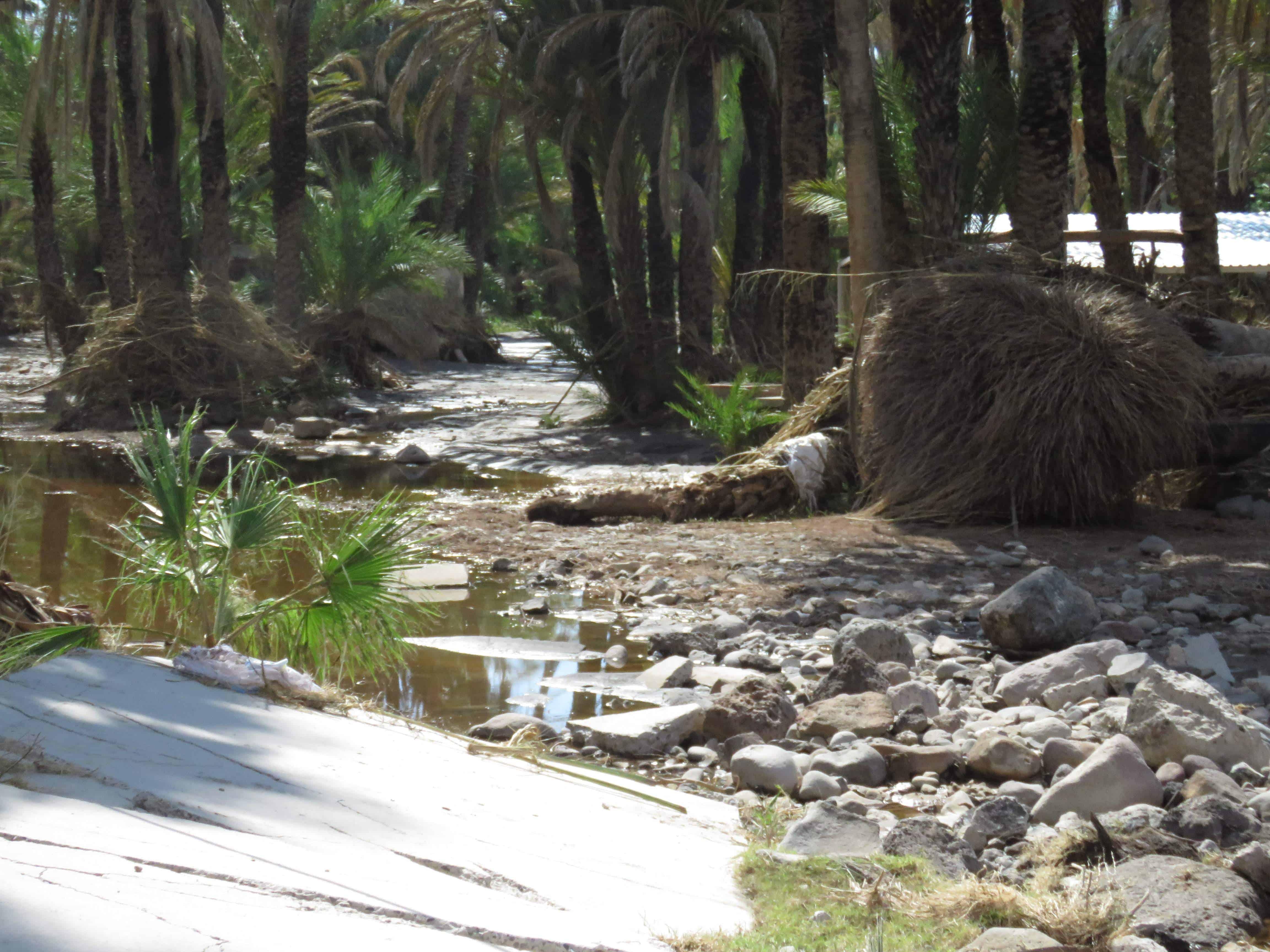 san ignasio, hurican damages