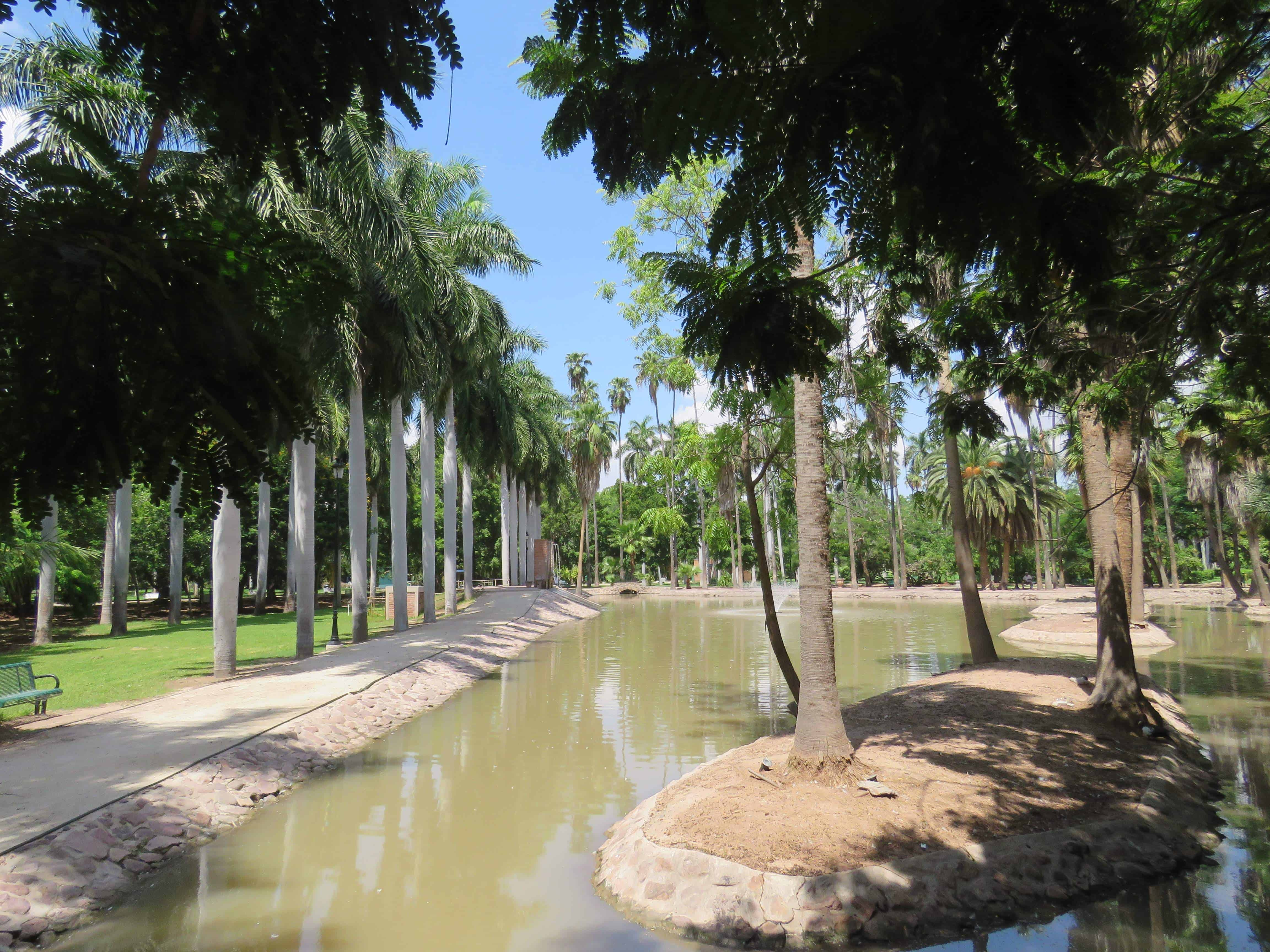 botanic garden, los mochis